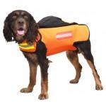 Dogtech Euro